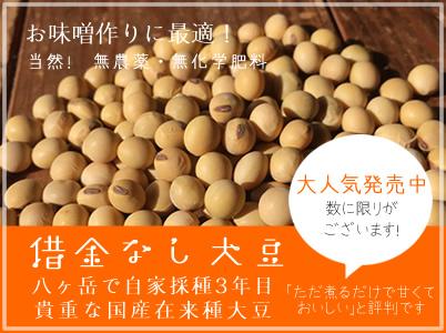 煮るだけで甘いと人気の借金なし大豆。国産無農薬、秩父の在来種。貴重な大豆を煮物やお味噌作りに是非お試しください!