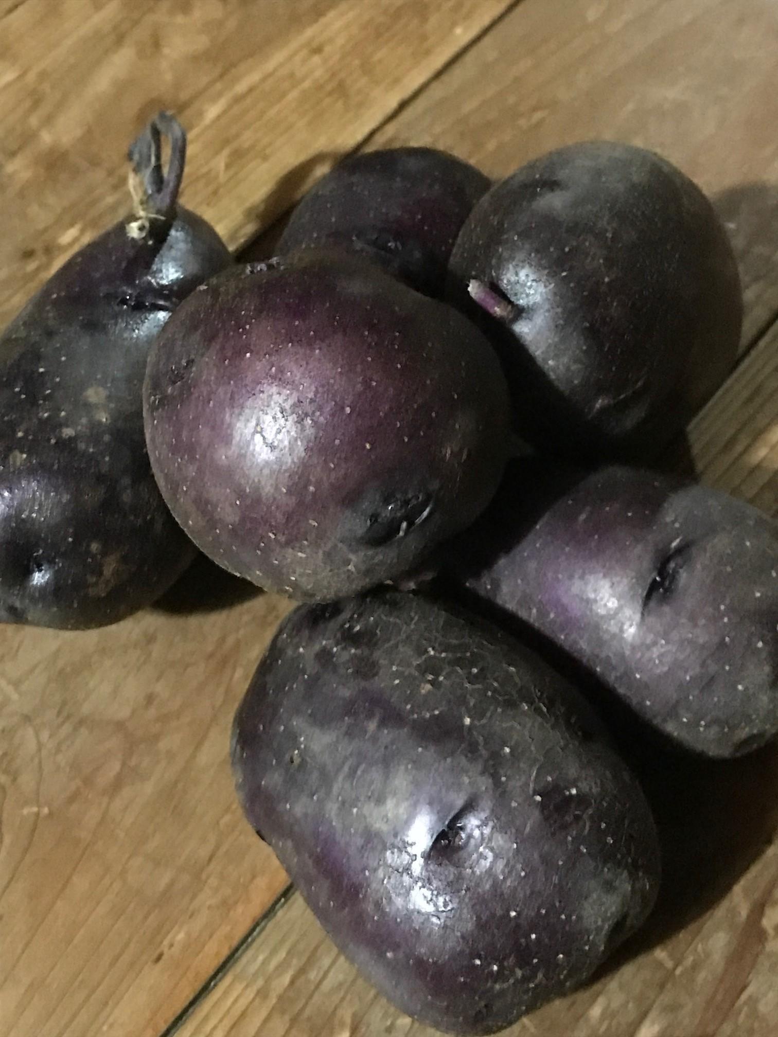 無農薬ジャガイモ「タワラマゼラン」販売開始