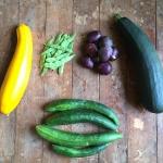 2018おまかせ固定種野菜セット(無農薬・無化学肥料)販売開始