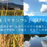 2017年田植えイベント開催日決定
