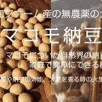 マコモ納豆作りWS情報やっと公開しました!