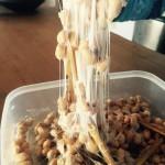 マコモ納豆WSと微生物