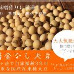 国産大豆の自給率