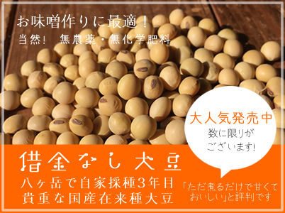 無農薬借金なし大豆販売